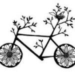 ciclopasteleiras2014